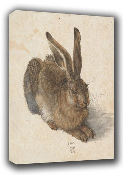 Durer, Albrecht: A Young Hare. Fine Art Canvas. Sizes: A3/A2/A1 (001925)